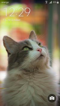 Best Cat Wallpapers screenshot 6
