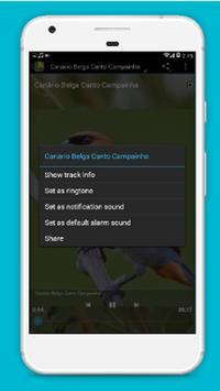 ALL BIRDSINGER apk screenshot