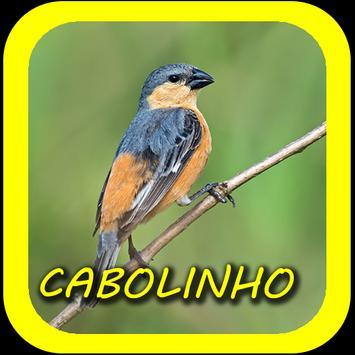 Canto de Caboclinho screenshot 1