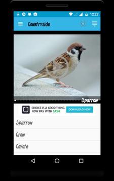 Animal Beats screenshot 1