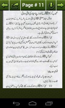 Jashan-e-Melad-e-Mustafa screenshot 8