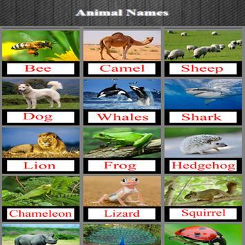 Animal Names poster