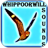 Whippoorwill Bird Sound icon
