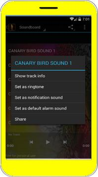 Canary Bird Singing apk screenshot