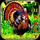 Turkey Sounds icon