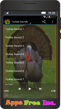 Turkey Sounds poster