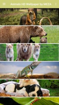 Animals HD Wallpaper by MEZA screenshot 1