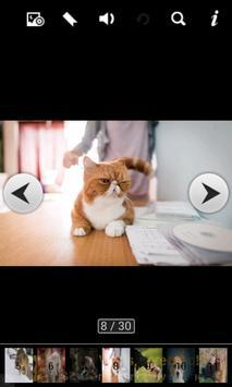 animal wallpaper backgrounds apk screenshot
