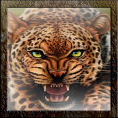 Leopard Live Wallpaper icon