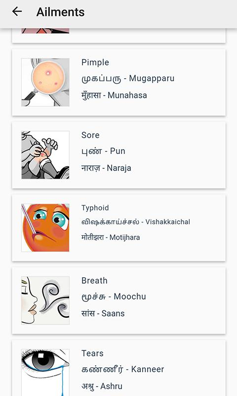 English to Tamil and Hindi Words for Android - APK Download