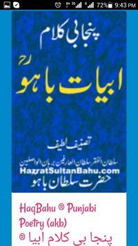 Hazrat Sultan Bahu ® poster