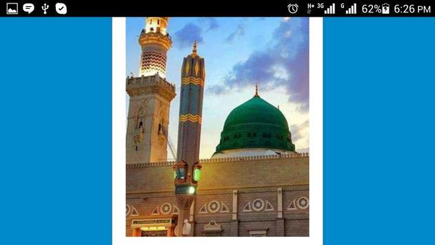 Hazrat Sultan Bahu ® screenshot 14