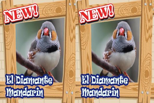 Canto del diamante mandarin Mp3 screenshot 3