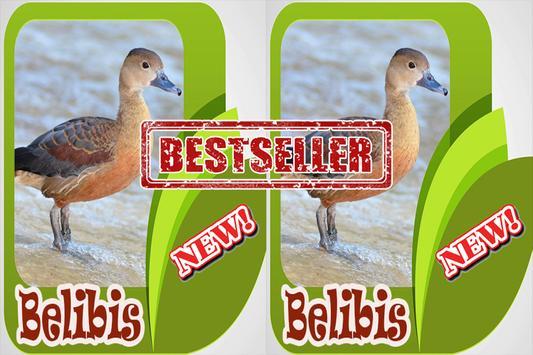 Kicau Burung Belibis Terbaik Mp3 apk screenshot