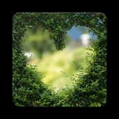 Love Wallpaper HD icon