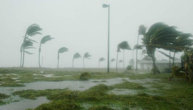 Desastres Naturales apk screenshot