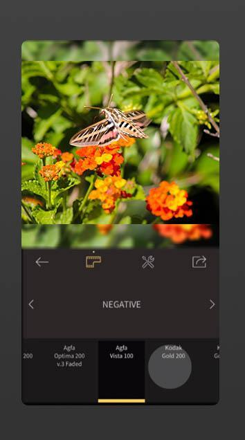 RNI Films for Android Tips for Android - APK Download