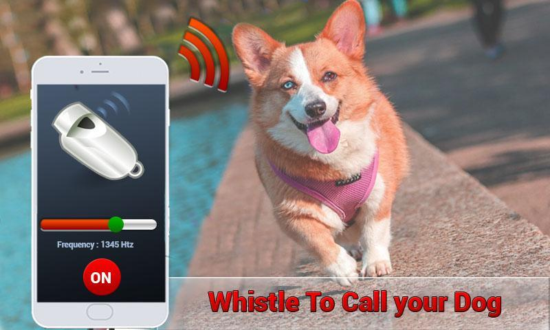 звук отпугивающий собак mp3