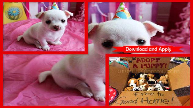 Adorable Puppy Party Dress screenshot 2