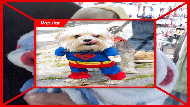 Adorable Puppy Party Dress screenshot 3