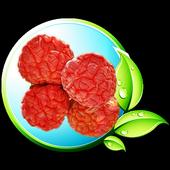 신안꾸지뽕비누 icon