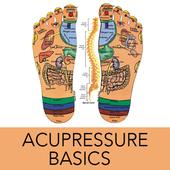 Learn Acupressure Basics icon