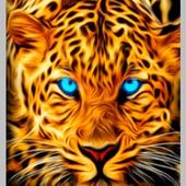 Blue Eyed Leopard LWP icon