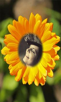 Photo In Sunflower frames apk screenshot
