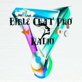 Bible Chat pro Radio icon