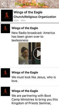 WingsOfTheEagle screenshot 1