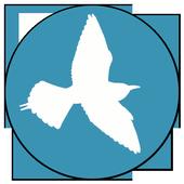 Birds Of Kyrgyzstan (Unreleased) icon