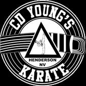 KarateNV icon