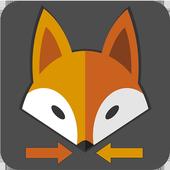 Fox Motorista Particular icon