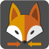Fox Motorista Particular icon