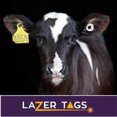 LaZer Tags icon