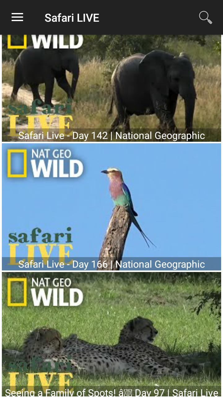 Nat Geo Wild Channel for Android - APK Download