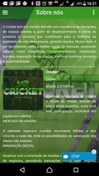 CRICKET 1 poster