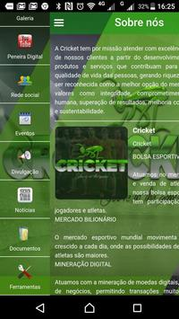 CRICKET 1 screenshot 2