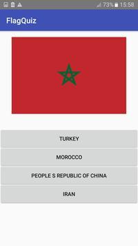 Flags of the World Quiz screenshot 4