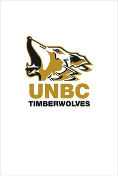Timberwolves Soccer poster