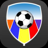 Voetbal in de Bollenstreek icon