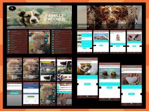 PET FRIENDS screenshot 6
