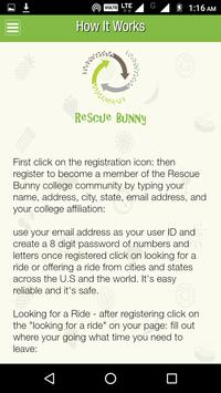 Rescue Bunny screenshot 5