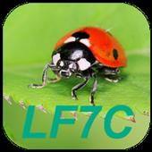 """LF7C """"Loto Foot"""" Calculator icon"""