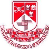 St Brigids GAA Club icon