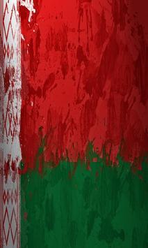 Belarus Flag apk screenshot