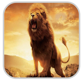 Lion Wallpapers HD icon