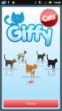 ★ Giffy Cats ★ poster