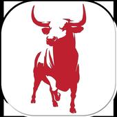 Toro Viejo icon