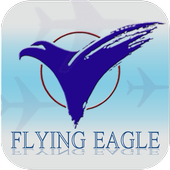 Flying Eagle Travel Pte Ltd icon